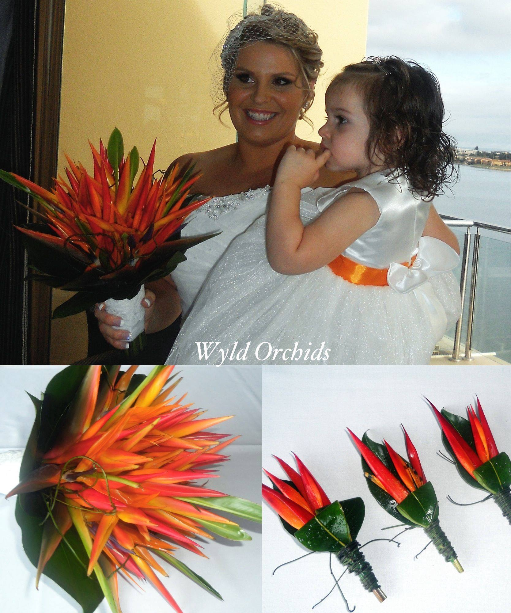 bird of paradise wedding flower
